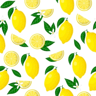 Vector cartoon seamless pattern with citrus limon or lemon exotic fruits, flowers and leafs