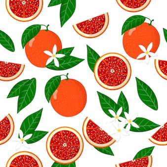 Vector cartoon seamless pattern with citrus sinensis or blood orange exotic fruits, flowers and leafs