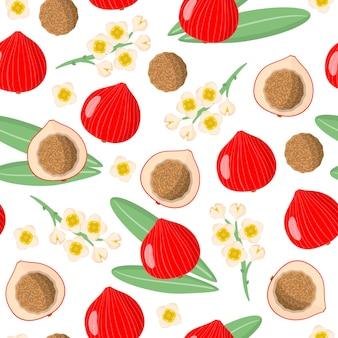 白い背景の上の砂漠quandongエキゾチックな果物、花、葉とベクトル漫画シームレスパターン