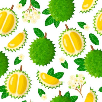 Vector cartoon seamless pattern with durio or durian exotic fruits, flowers and leafs