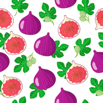 Vector cartoon seamless pattern with ficus carica or figs exotic fruits, flowers and leafs