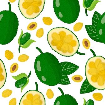 Jackfruit 이국적인 과일, 꽃 및 흰색 배경에 잎 벡터 만화 원활한 패턴