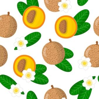 白い背景の上のmammeaamericanaエキゾチックな果物、花、葉とベクトル漫画シームレスパターン