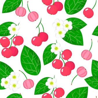 Vector cartoon seamless pattern with muntingia calabura or capulin exotic fruits, flowers and leafs