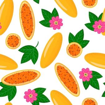 Векторный мультфильм бесшовный образец с экзотическими фруктами, цветами и листьями passiflora mixta или curuba на белом фоне
