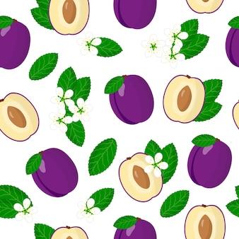 Prunusdomesticaまたは紫色のプラムエキゾチックな果物、花、葉とベクトル漫画のシームレスなパターン