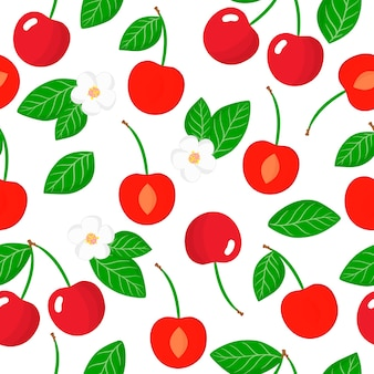 Vector cartoon seamless pattern with prunus subgen. cerasus or cherry exotic fruits, flowers and leafs