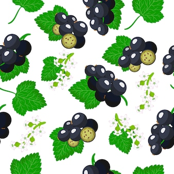Vector cartoon seamless pattern with ribes nigrum or blackcurrant exotic fruits, flowers and leafs