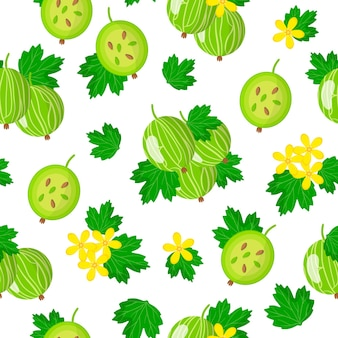 Vector cartoon seamless pattern with ribes uva-crispa or common gooseberry exotic fruits, flowers and leafs