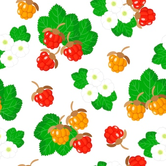 Vector cartoon seamless pattern with rubus chamaemorus or cloudberry exotic fruits, flowers and leafs