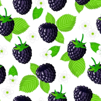 Vector cartoon seamless pattern with rubus eubatus or blackberry exotic fruits, flowers and leafs