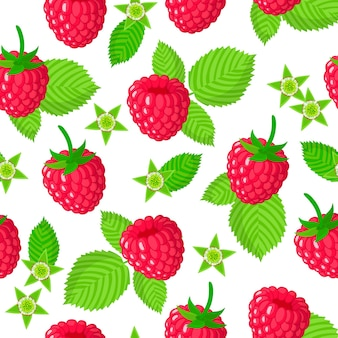 Vector cartoon seamless pattern with rubus idaeus or raspberry exotic fruits, flowers and leafs