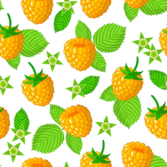 Vector cartoon seamless pattern with rubus idaeus or yellow raspberries exotic fruits, flowers and leafs