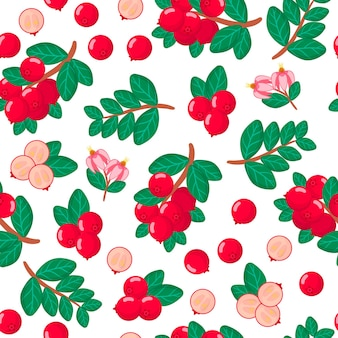 Vector cartoon seamless pattern with vaccinium oxycoccos or cranberries exotic fruits, flowers and leafs