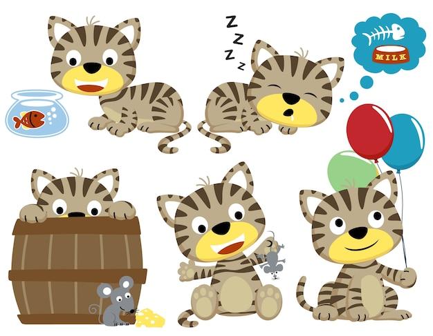 おかしい猫のベクトル漫画セット