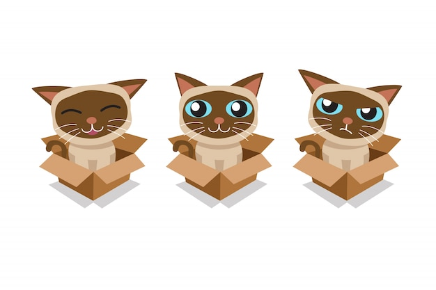 Vector cartoon siamese cat