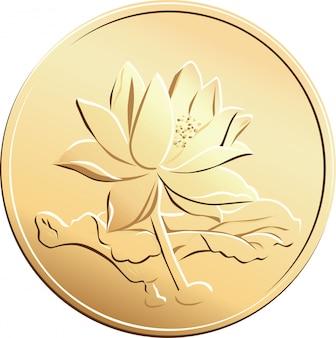 花の写真とベクトル中国のコイン