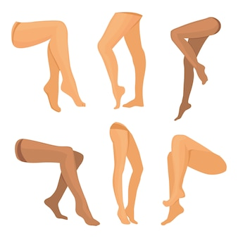 Vector collection of beauty legs isolated