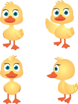 Vector collection of cute duck isolated on white background