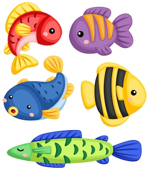 A vector collection of many fishes