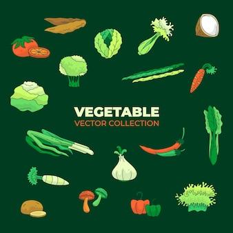 Векторная коллекция ассорти из свежих и зеленых овощей