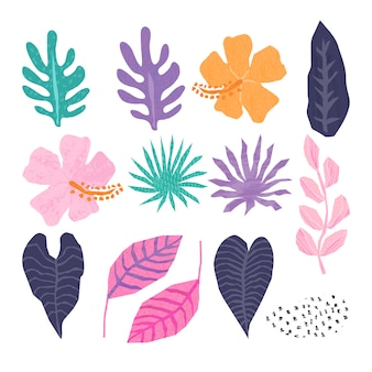 Vector collection of tropical jungle leaves