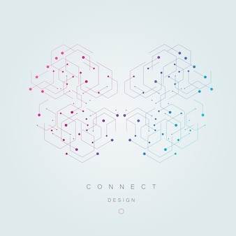 Vector connection and social network