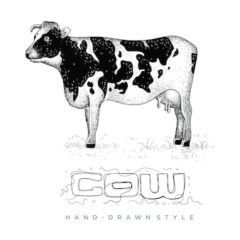 Vector of cows on the grass, hand drawn animal illustration