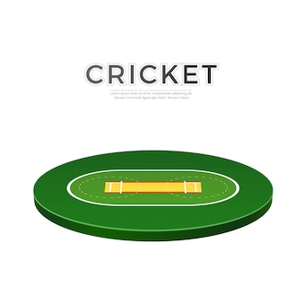 Vector cricket playground 3d icon for betting
