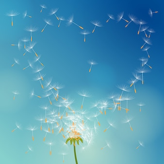 Vector dandelion with seeds flying away with the wind forming love