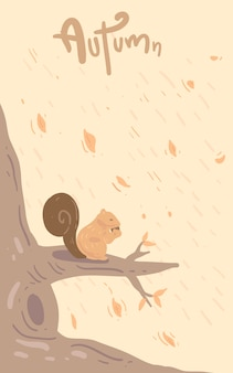 Vector design for card and poster . squirrel illustration