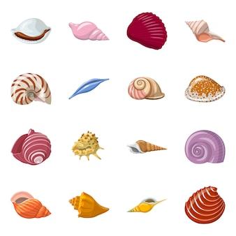 貝殻と軟体動物のシンボルのベクターデザイン。貝殻とシーフードセットのセット