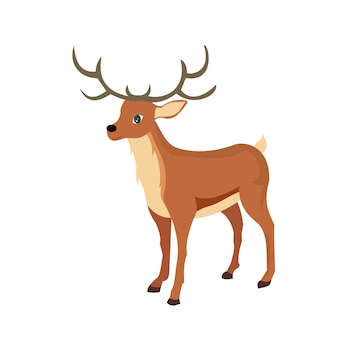 Vector design of reindeer, animal rangifer