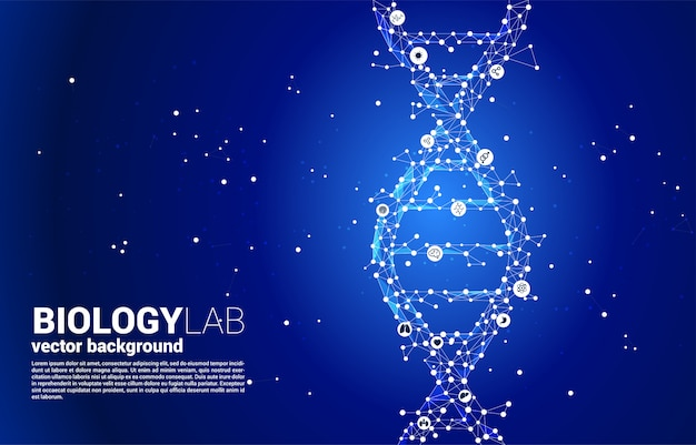 Vector dna genetic structure from dot connect line polygon. concept for biotechnology and biology scientific.
