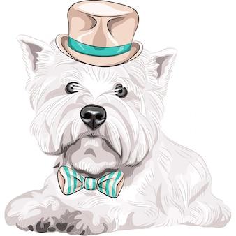 Вектор собака породы вест хайленд уайт терьер в шляпе и галстуке-бабочке