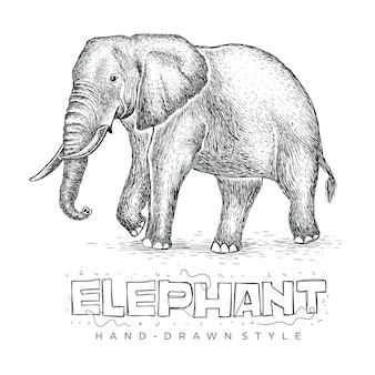 ベクトル象ウォーキング、手描きの動物のリアルなイラスト