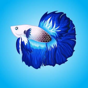 Вектор экзотических рыб betta halfmoon белый и синий хвост иллюстрации иллюстрации, изолированные на воде