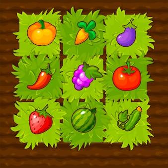 벡터 농장 게임 필드 경기 3 야채입니다. 딸기와 함께 녹색 침대를 재생합니다.