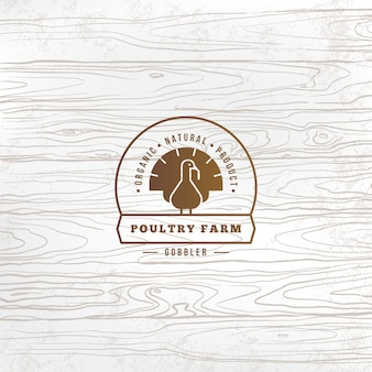 Vector farm turkey logo with turkey drawn in flat style and place for text and title.