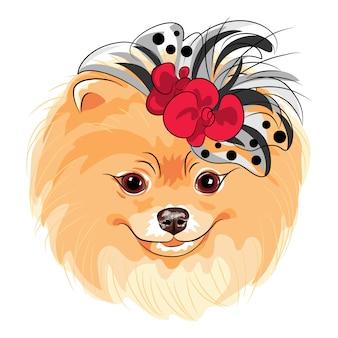 Вектор модная собака поморская порода улыбается