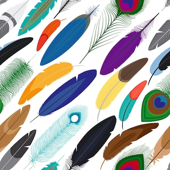 Vector feathers seamless background. pattern with colored feathers on white background