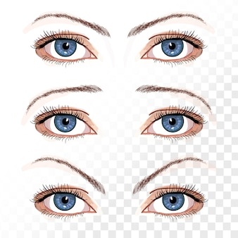 Vector female eyes isolated on white hand drawn illustration