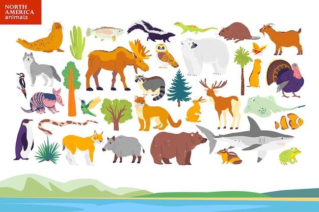 Vector flat illustration of north america landscape, animals, plants: seal, bear, moose, owl, deer, raccoon, turkey, sequoia, fir tree, oak, cactus. for infographics, children book, alphabet, banner.