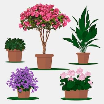 냄비에 식물의 벡터 평면 그림입니다.