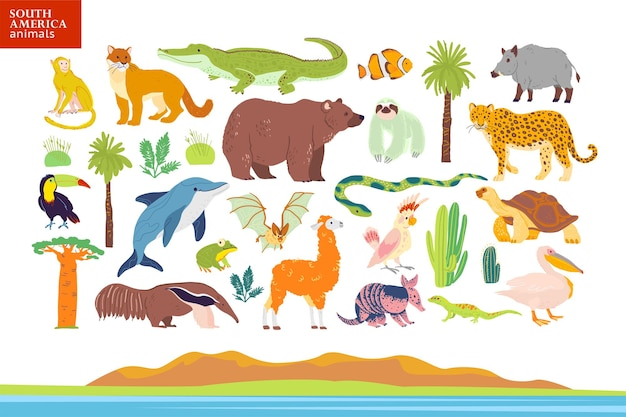 Vector flat illustration of south america animals, landscape, plants: crocodile, bear, anaconda, anteater, monkey, toucan palm tree, oak, cactus. good for infographics, children book, alphabet, banner