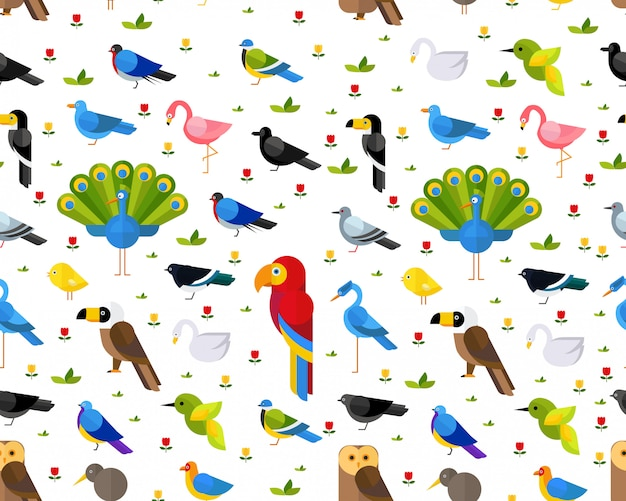 Vector flat seamless texture pattern colorful birds.