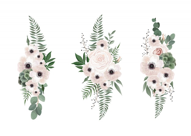 Vector floral bouquet design anemone