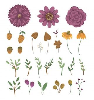 Vector floral clip art set. hand drawn flat illustration with flowers, leaves, branches, acorns, cones. meadow, woodland, forest autumn elements isolated on white space.