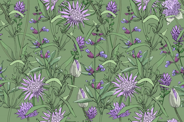 Vector floral seamless pattern with purple oyster plant