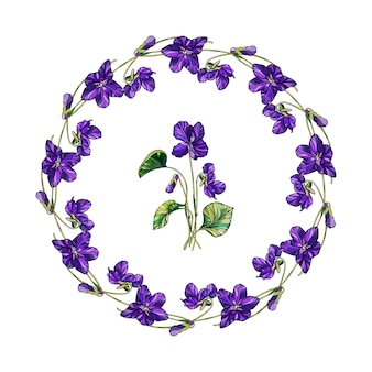 Vector floral wreath of violets flowers